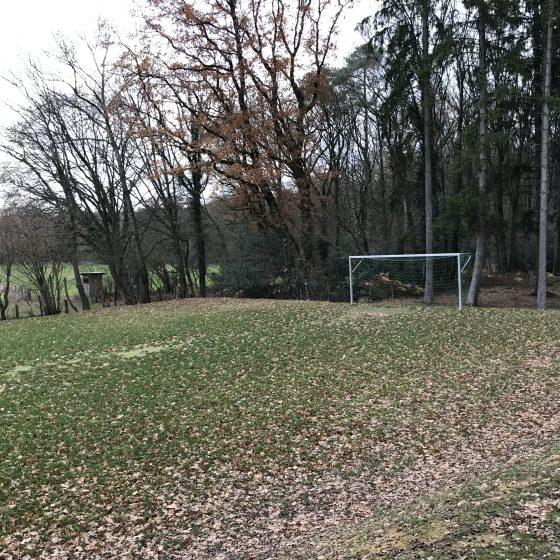 Der Fußballplatz.