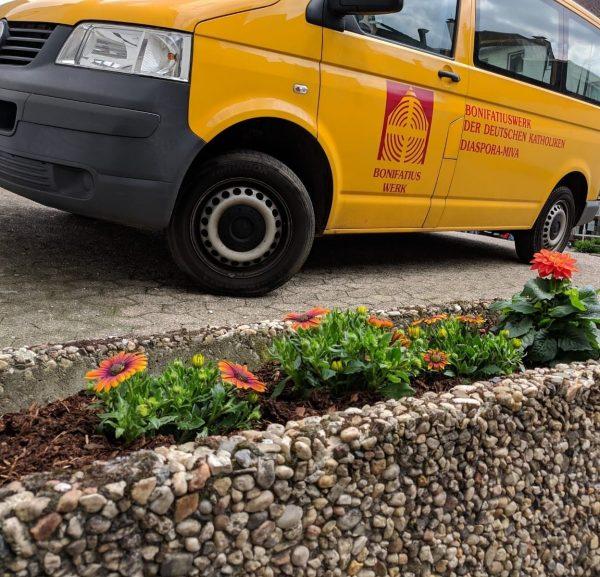Neugestaltung Blumenbeet